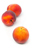 Three uncut, whole, ripe peaches fruit royalty free stock images