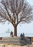 Three unidentified Nepalese old men take a afternoon rest under big old naked tree Stock Photography