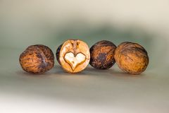 Three unshelled walnuts. And broken half with nutmeat  on white background Stock Photography