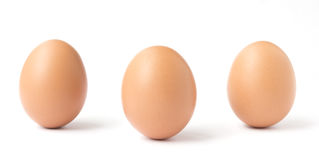 Three upright brown chicken eggs. Three brown chicken eggs standing upright  isolated against a white background Royalty Free Stock Photo