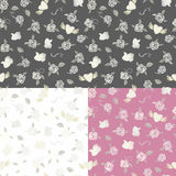 Three Valentine seamless patterns Stock Images
