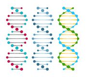 Three variants of double strand DNA molecules. Showing the nucleotide pairs in a double helix  vector illustration Royalty Free Stock Image