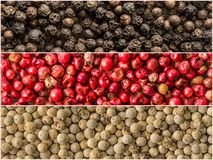 Three variations of peppercorns. Banners of spices Royalty Free Stock Photo