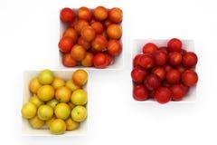 Three varieties of cherry-plum Stock Image