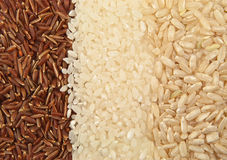 Three varieties of rice Royalty Free Stock Photography