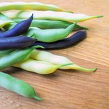 Three varieties of young asparagus beans on a wooden board. Pods of young asparagus bean yellow purple and green color lie on a wooden board royalty free stock photos