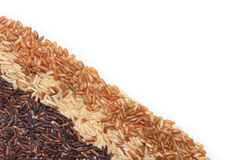 Three variety kinds of brown rice Royalty Free Stock Photography