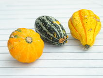 Three various decorative pumpkins Stock Photography