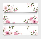 Three vector banners with pink lisianthus flowers. Royalty Free Stock Image