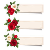 Three vector banners with red and white roses. Royalty Free Stock Photography