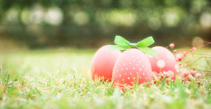 Three vibrant pink eggs with green bow knot in grass Royalty Free Stock Images