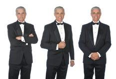 Three views of mature man wearing a tuxedo royalty free stock image