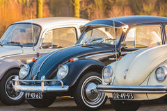 Three vintage Volkswagen Beetles from the seventies Stock Images