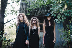 Three vintage witch go to the Sabbat Royalty Free Stock Image