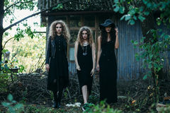 Three vintage witch go to the Sabbat Stock Images