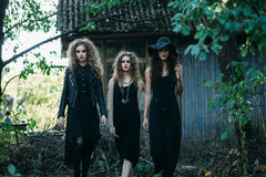 Three vintage witch go to the Sabbat. Eve of Halloween Stock Photos
