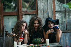 Three vintage witches perform magic ritual. At the table, with the elixir in hand on the eve of Halloween Stock Photography