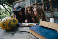Three vintage witches perform magic ritual Royalty Free Stock Images