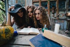 Three vintage witches perform magic ritual Royalty Free Stock Photo