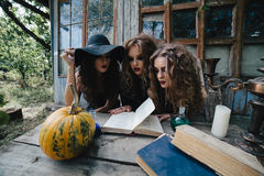 Three vintage witches perform magic ritual. At the table, reading a magical book on the eve of Halloween Stock Images