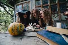 Three vintage witches perform magic ritual Stock Image