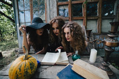 Three vintage witches perform magic ritual. At the table, reading a magical book on the eve of Halloween Stock Image