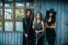 Three vintage women as witches Royalty Free Stock Photos