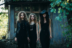 Three vintage women as witches Stock Photography