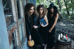 Three vintage women as witches. Poses near an abandoned building on the eve of Halloween Stock Photos