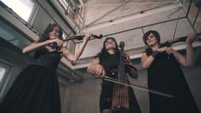 Three violinists with black clothes play in an unfinished room. Great musicians in the industrial landscape stock video