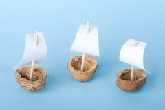 Three walnut boats Royalty Free Stock Photography
