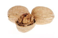 Three walnuts front view Stock Photography