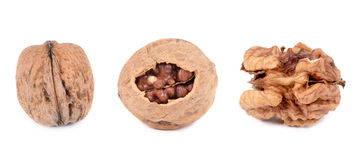 Three walnuts. Royalty Free Stock Photo