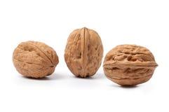 Three walnuts royalty free stock images