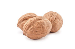 Three walnuts isolated on white Stock Photography
