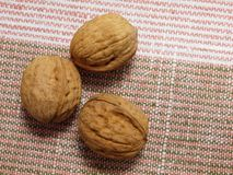 Three walnuts lying on linen napkin Royalty Free Stock Photography