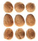Three walnuts nut in diferrent views, over white Stock Photos