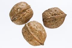 Three walnuts Stock Photo