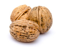Three walnuts Stock Photography