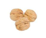 Three walnuts on a white background Stock Image