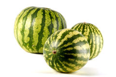 Three water melons on white background Royalty Free Stock Image