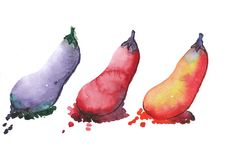 Watercolor colored eggplants. Three watercolor colored eggplants: violet, red and  orange. a drop of juice Stock Images