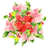 Three watercolor hibiscus with foliage and Stock Photo