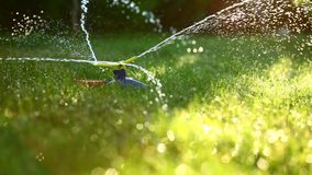 Three-way sprinkler in garden Stock Image