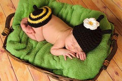 Three week old baby girl wearing bumblebee costume Royalty Free Stock Photography