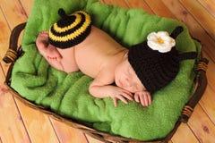 Three Week Old Baby Girl Wearing Bumblebee Costume Royalty Free Stock Photography