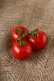 Three wet cherry tomatoes on jute cloth Stock Photos