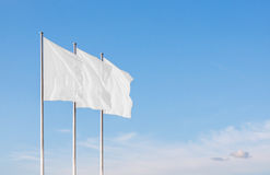 Three white blank corporate flags waving in the wind stock images