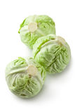 Three white cabbages Royalty Free Stock Photo