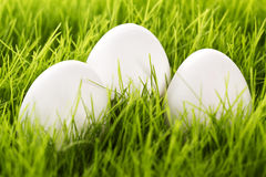 Three white easter eggs in grass Royalty Free Stock Photo